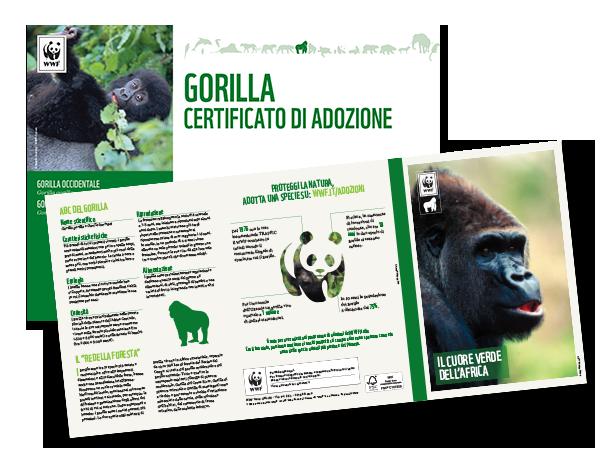 Adotta un Gorilla - Sostieni il WWF Italia