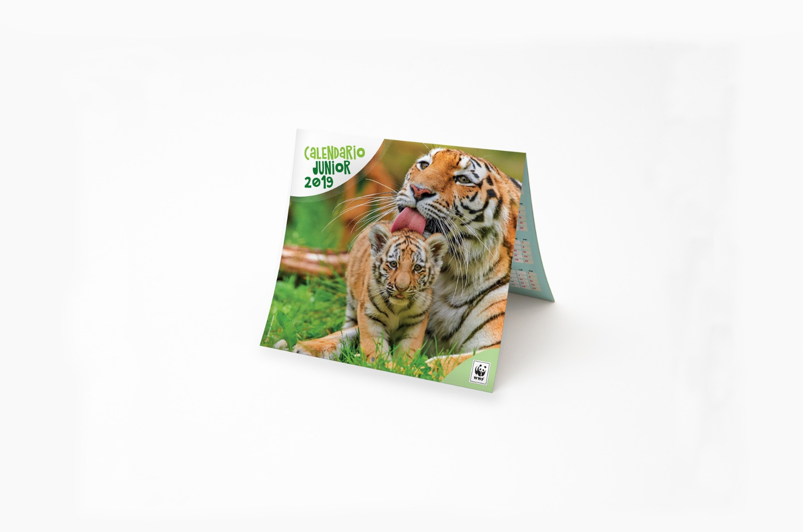 Calendario WWF 2019 Junior