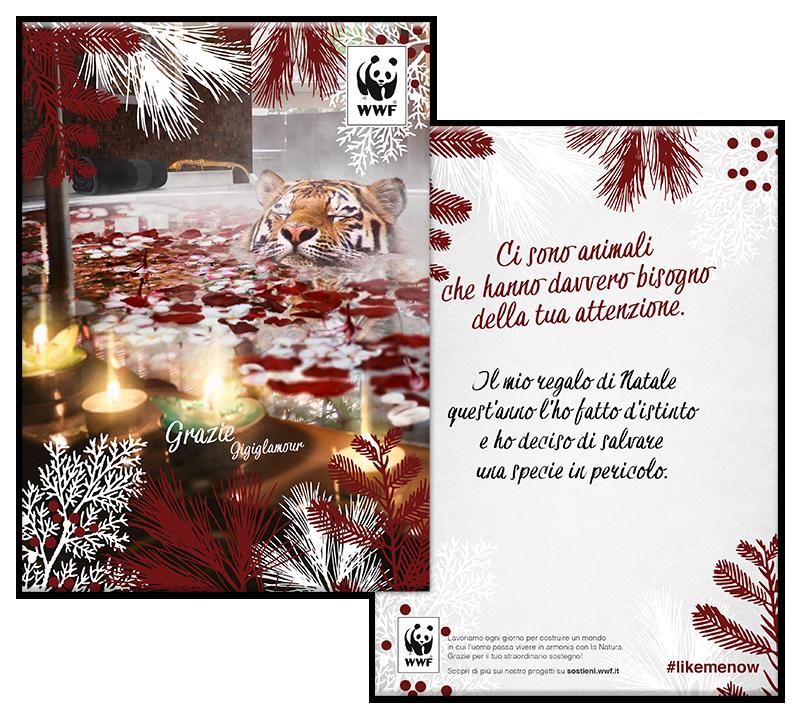 Il Mio Regalo Di Natale.Cartoline Solidali Wwf Sostieni Il Wwf Italia
